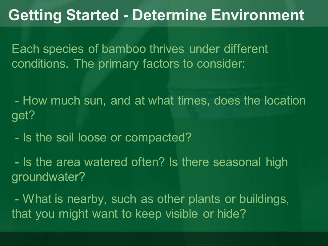 Getting Started - Determine Environment