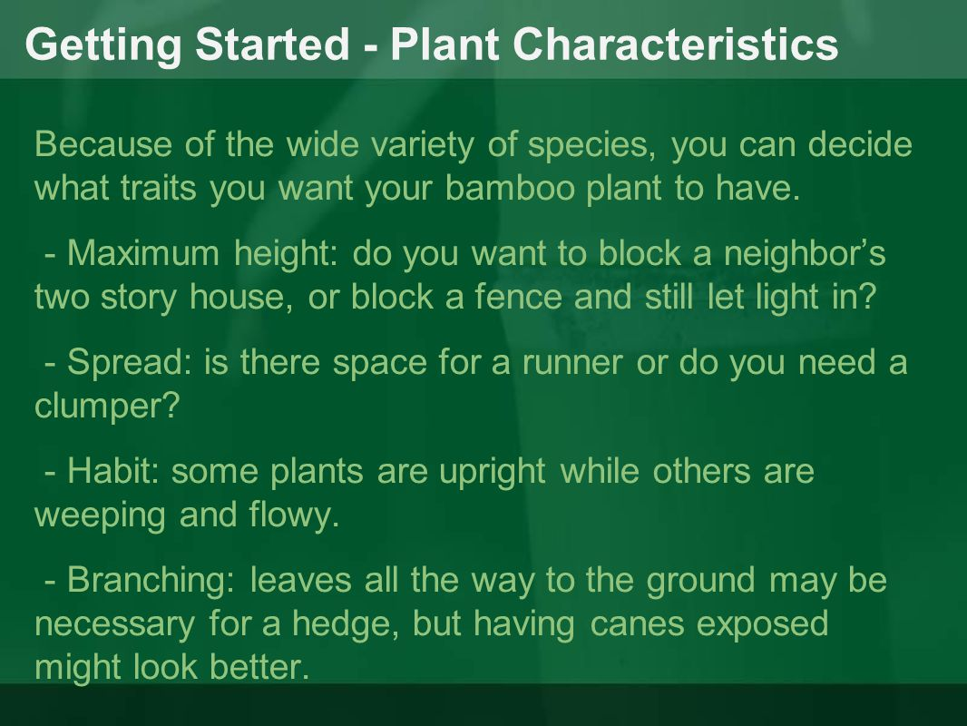 Getting Started - Plant Characteristics