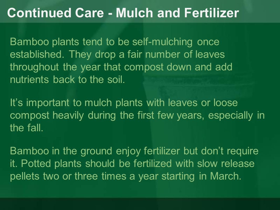 Continued Care - Mulch and Fertilizer