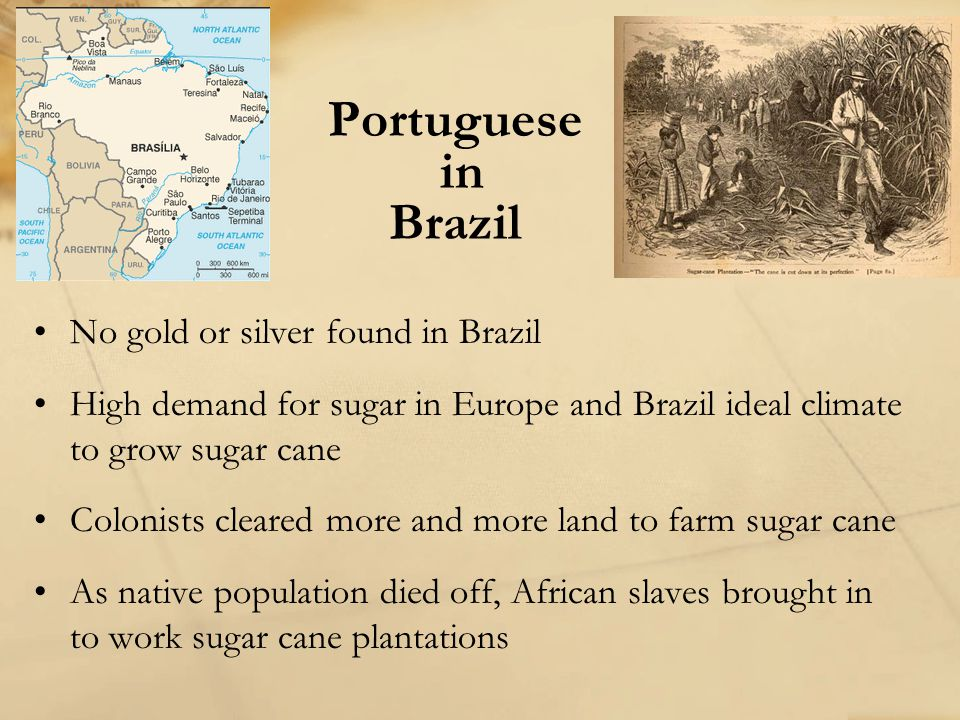 Portuguese in Brazil No gold or silver found in Brazil