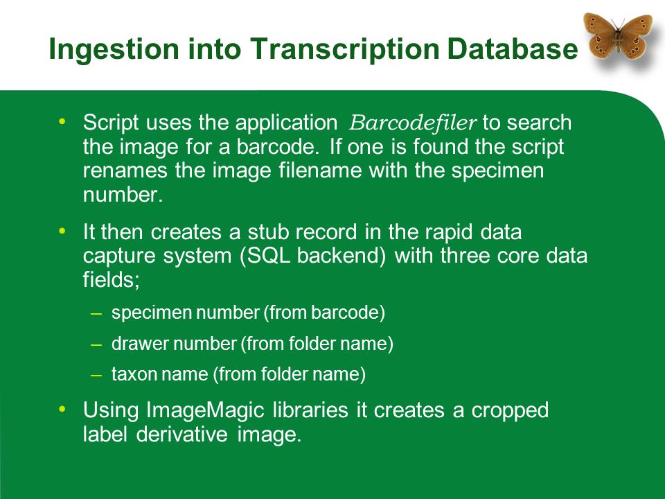 Ingestion into Transcription Database