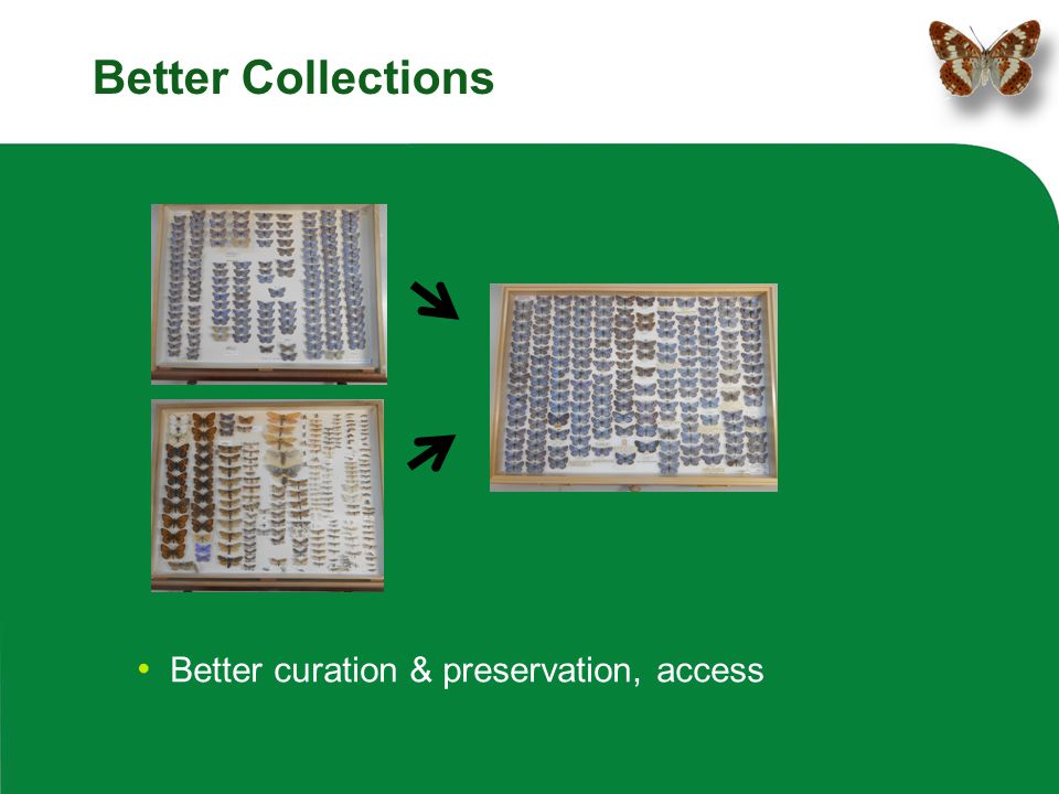Better Collections Better curation & preservation, access