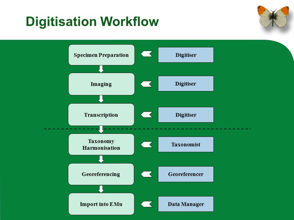 Digitisation Workflow