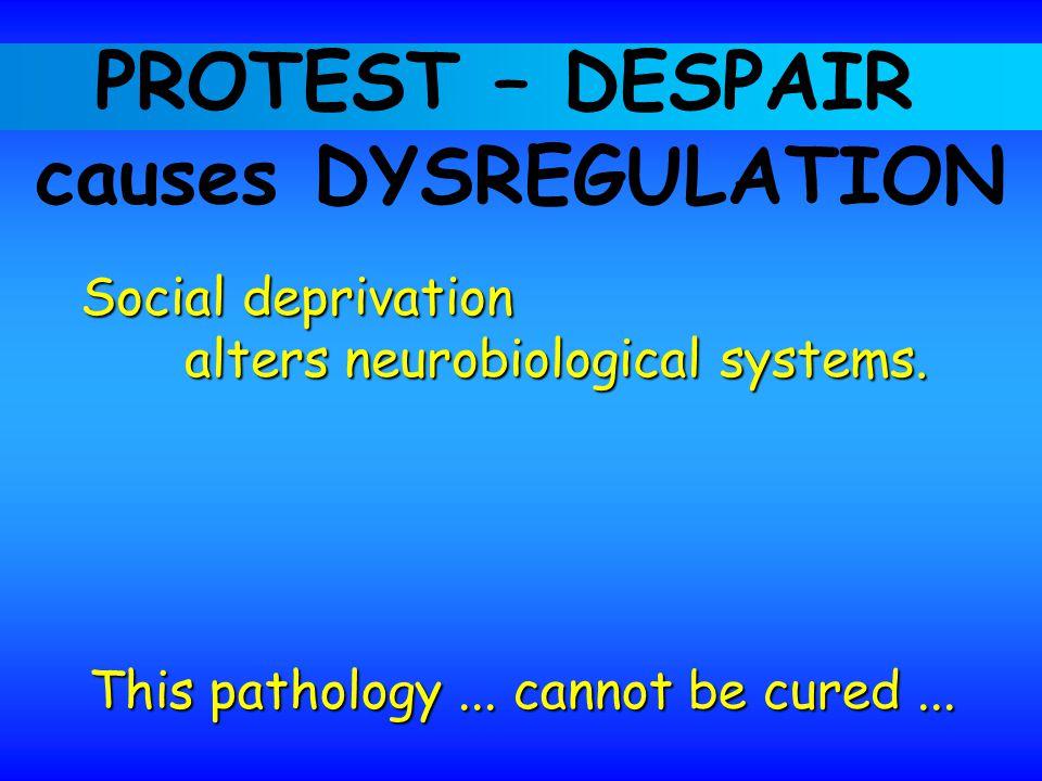 PROTEST – DESPAIR causes DYSREGULATION