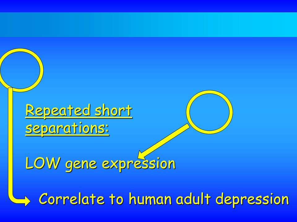 Repeated short separations: