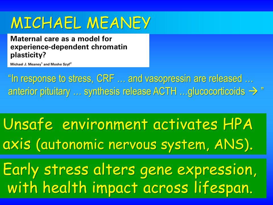 Unsafe environment activates HPA axis (autonomic nervous system, ANS).