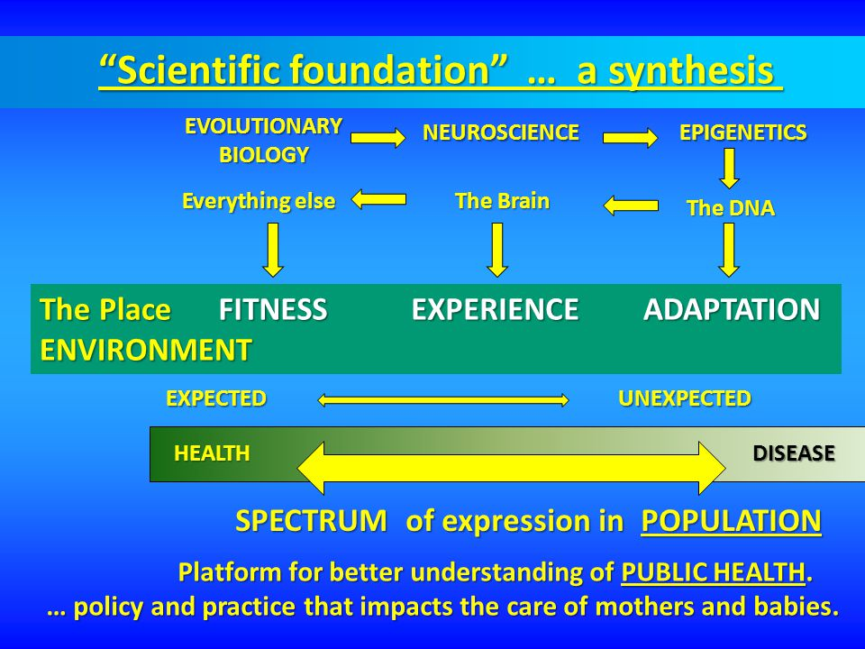 Scientific foundation … a synthesis