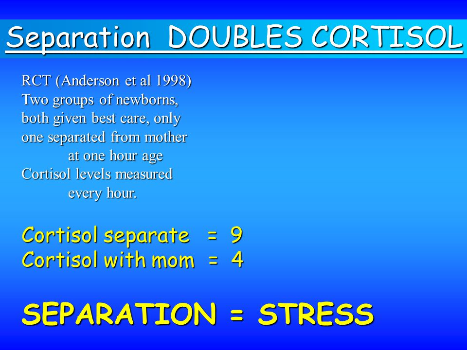 Separation DOUBLES CORTISOL