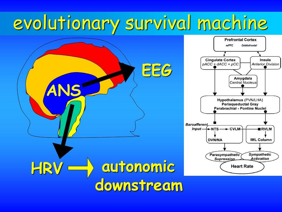 evolutionary survival machine