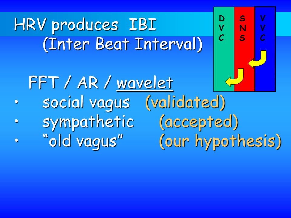 social vagus (validated) sympathetic (accepted)