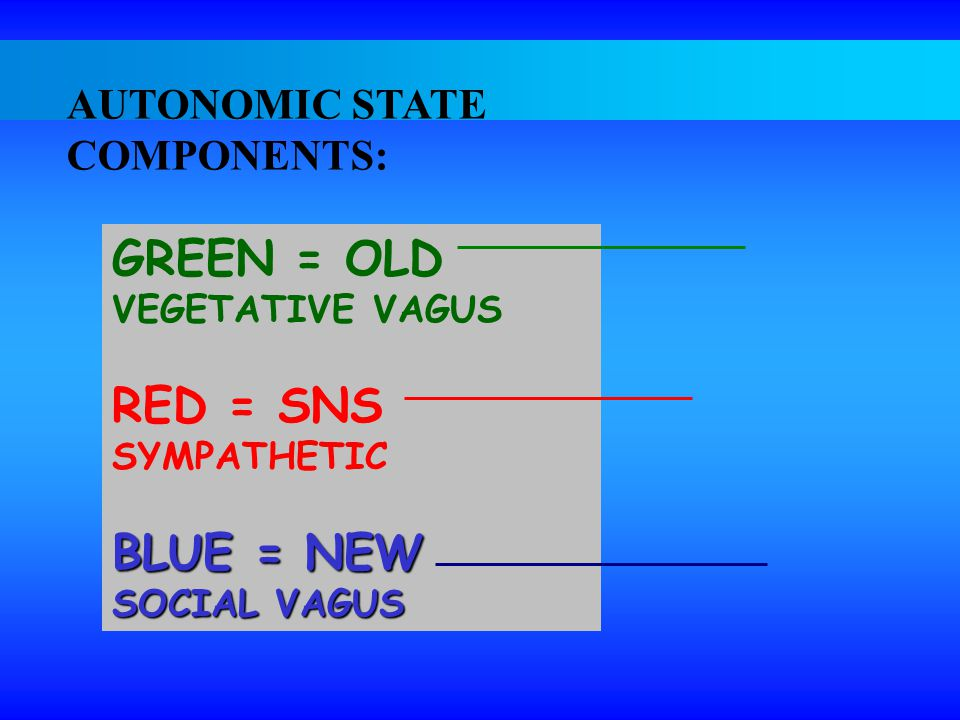 GREEN = OLD RED = SNS BLUE = NEW AUTONOMIC STATE COMPONENTS:
