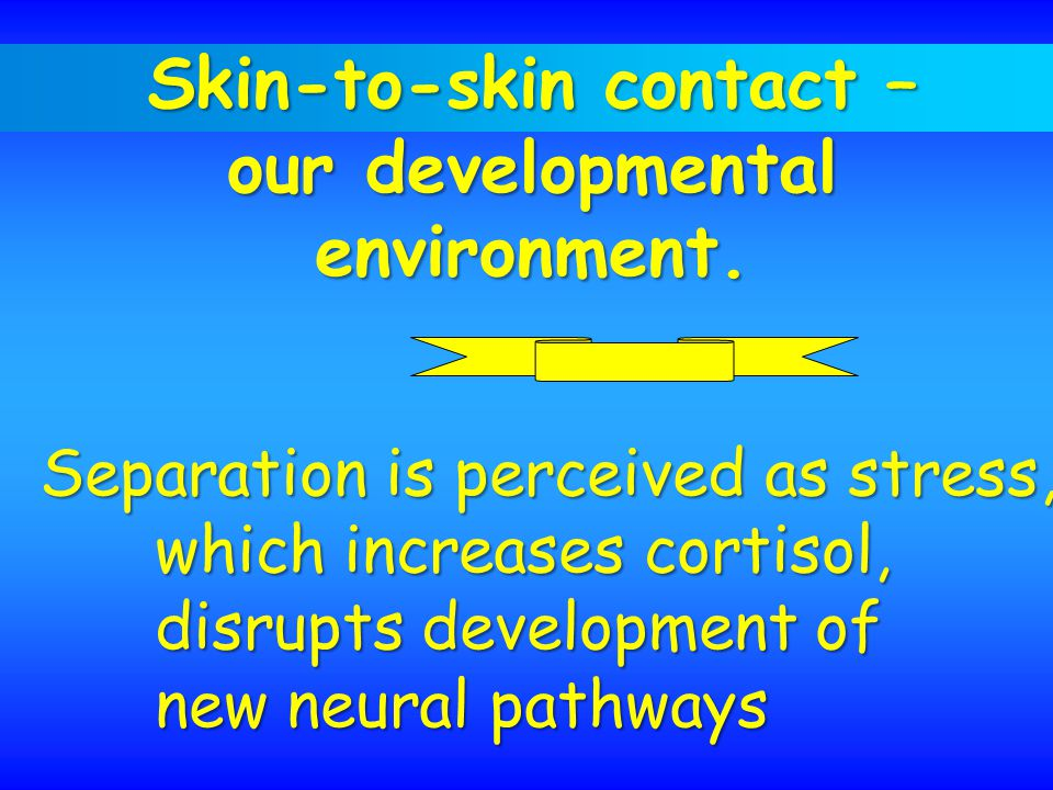 Skin-to-skin contact – our developmental environment.