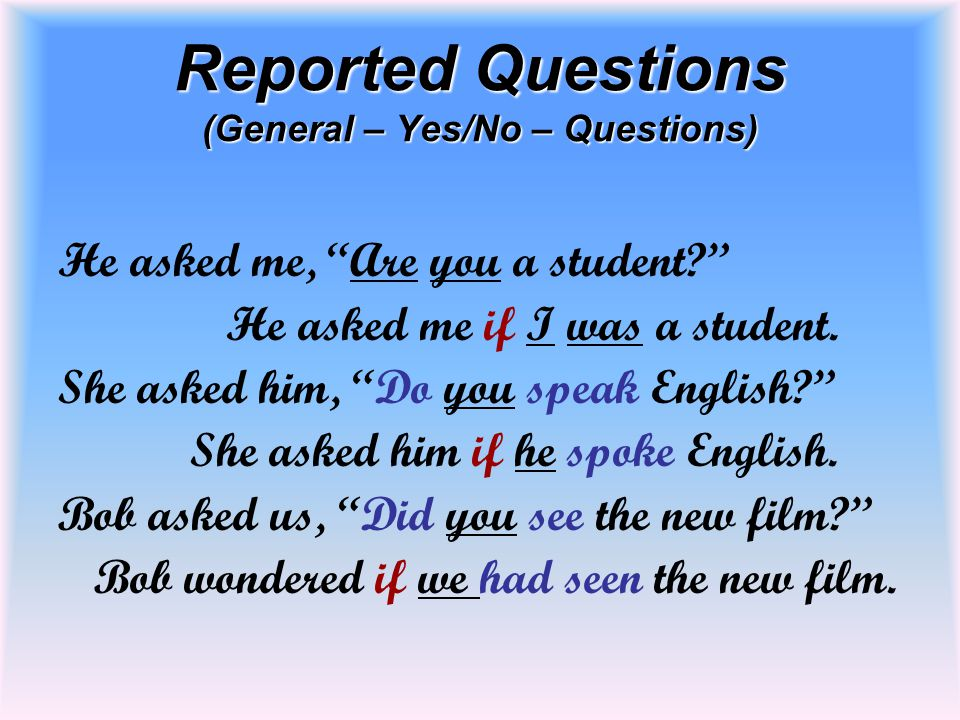 Reported Questions (General – Yes/No – Questions)