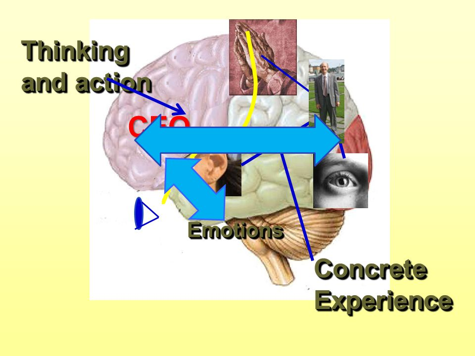 Thinking and action CEO Emotions Concrete Experience