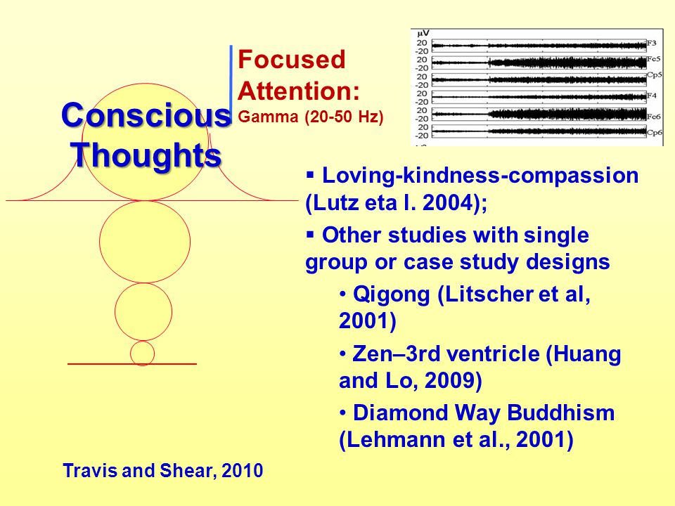 Conscious Thoughts Focused Attention: Gamma (20-50 Hz)
