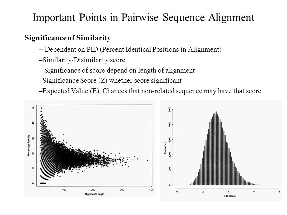 Important Points in Pairwise Sequence Alignment