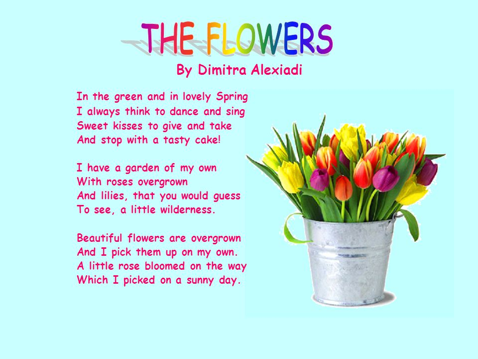 THE FLOWERS In the green and in lovely Spring By Dimitra Alexiadi