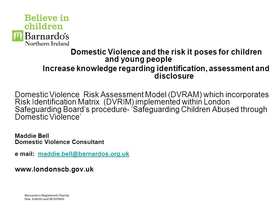 Domestic Violence and the risk it poses for children and young people