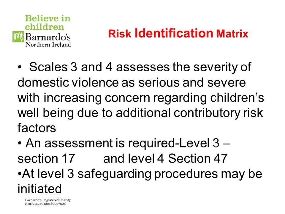 Risk Identification Matrix