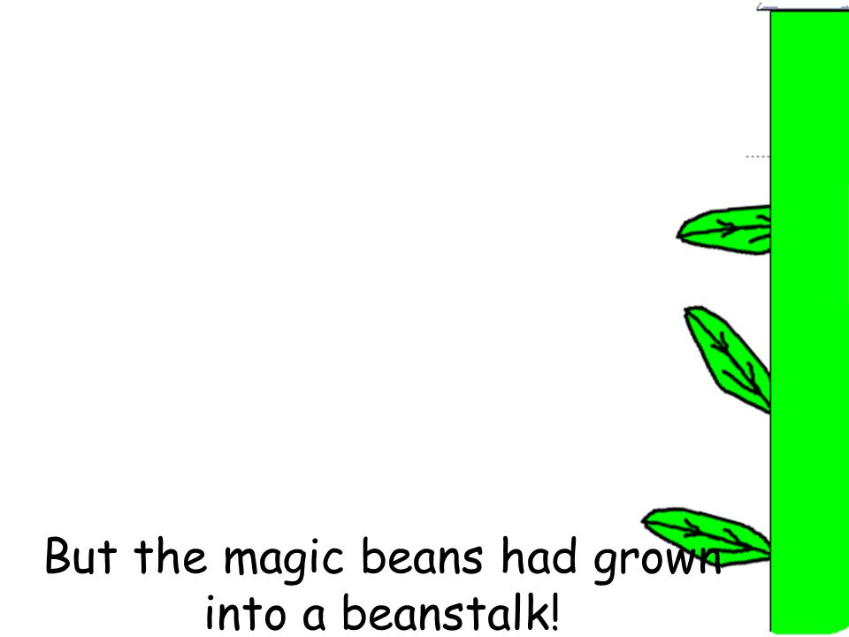 But the magic beans had grown into a beanstalk!