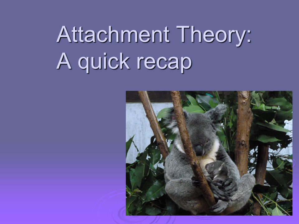 Attachment Theory: A quick recap