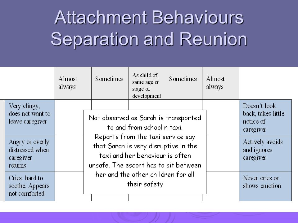 Attachment Behaviours Separation and Reunion