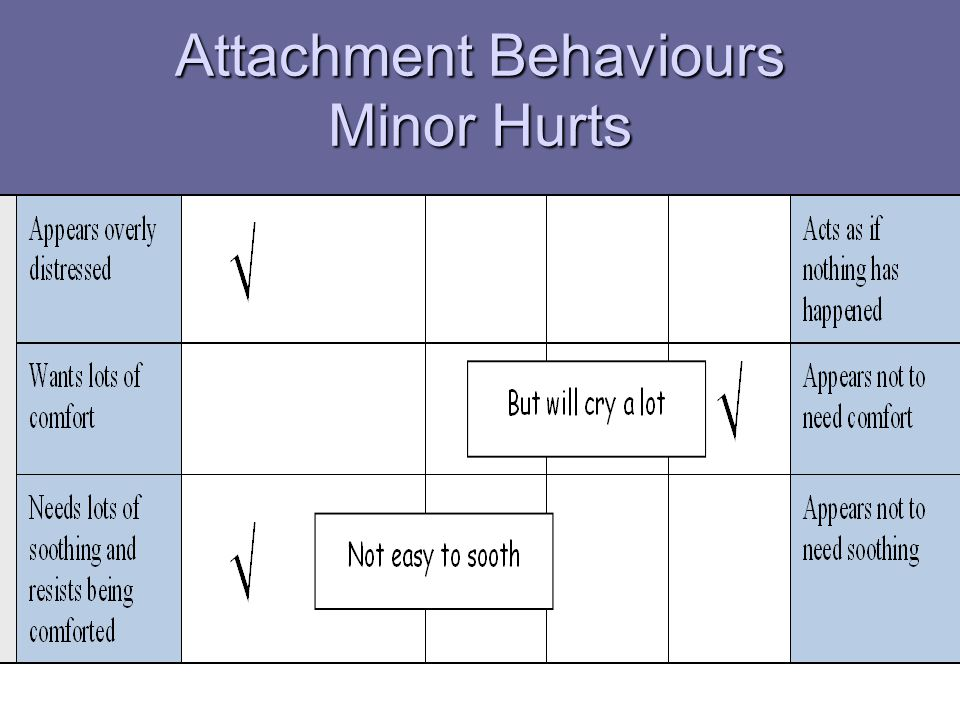 Attachment Behaviours Minor Hurts