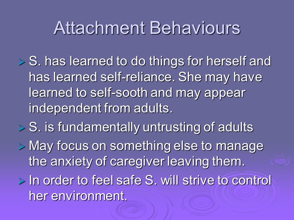 Attachment Behaviours