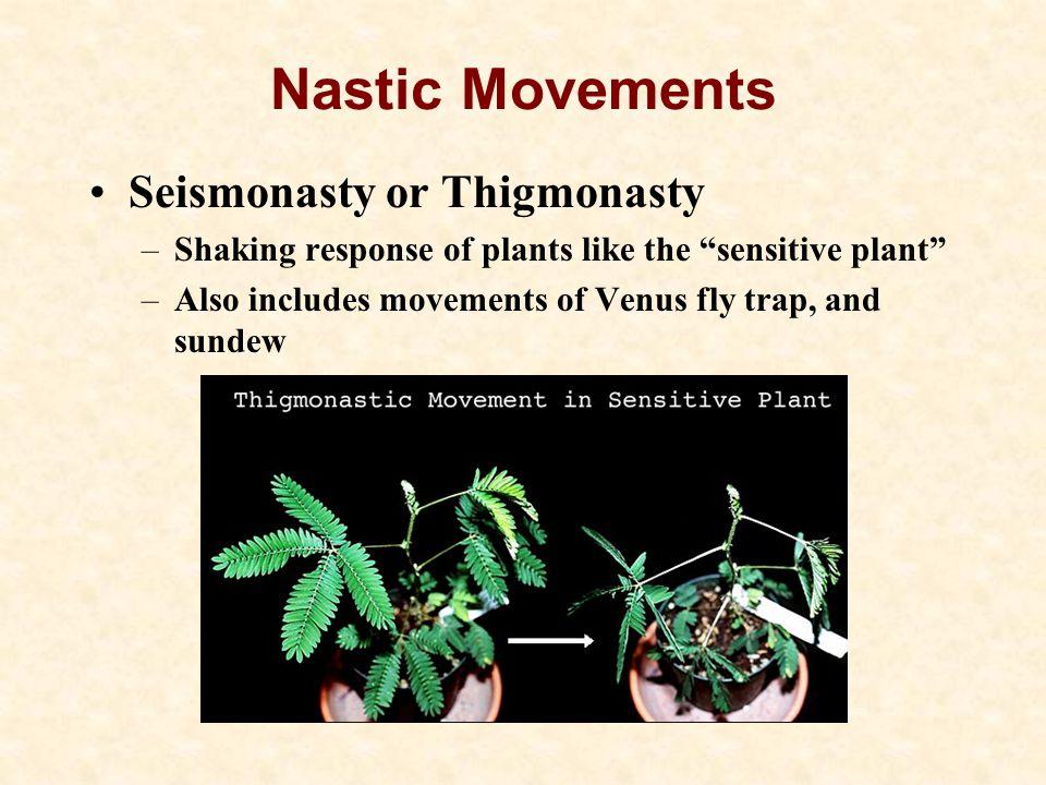 Nastic Movements Seismonasty or Thigmonasty
