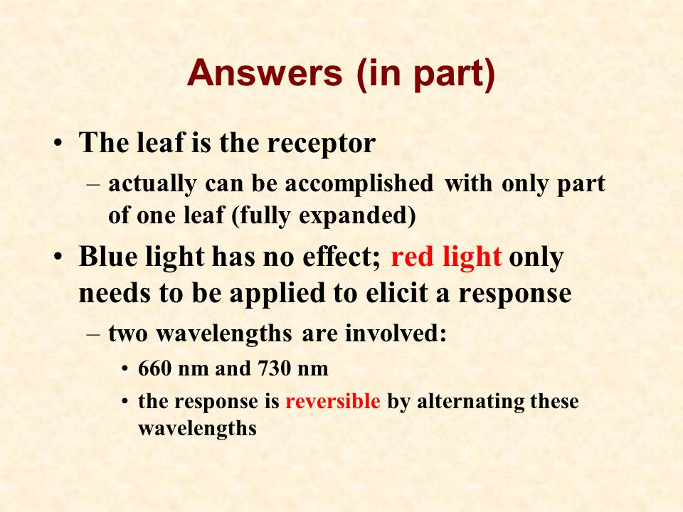 Answers (in part) The leaf is the receptor