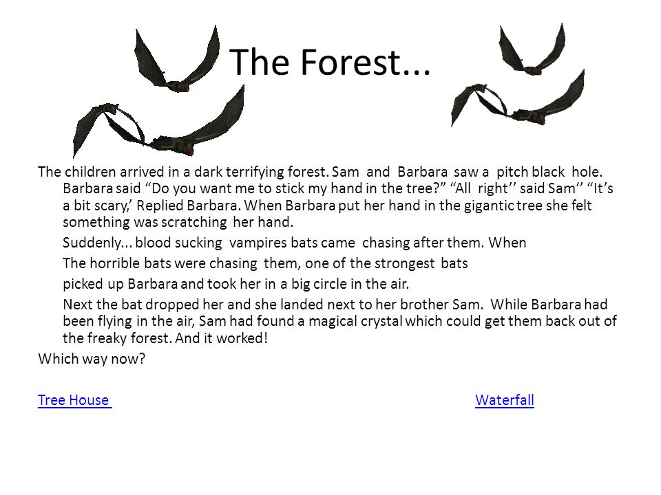 The Forest...