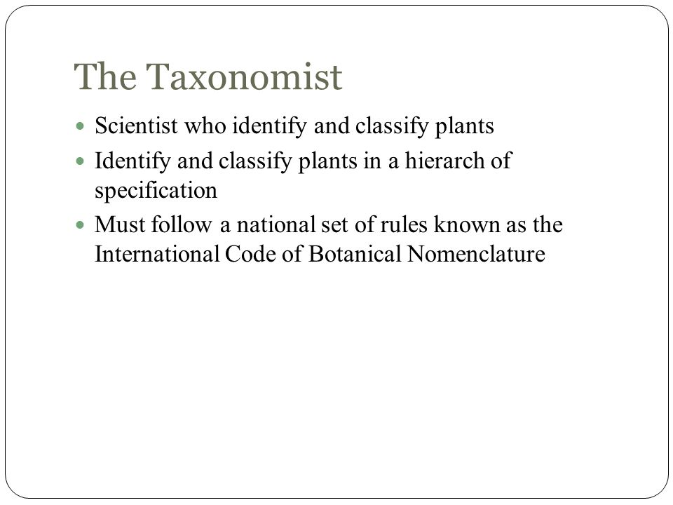 The Taxonomist Scientist who identify and classify plants
