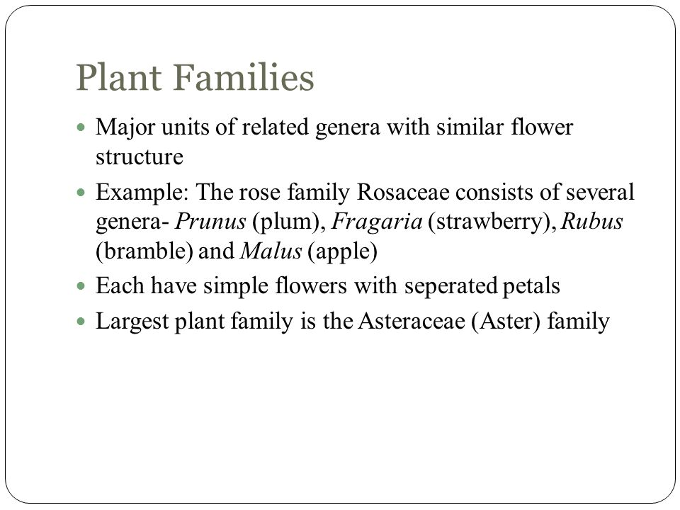 Plant Families Major units of related genera with similar flower structure.