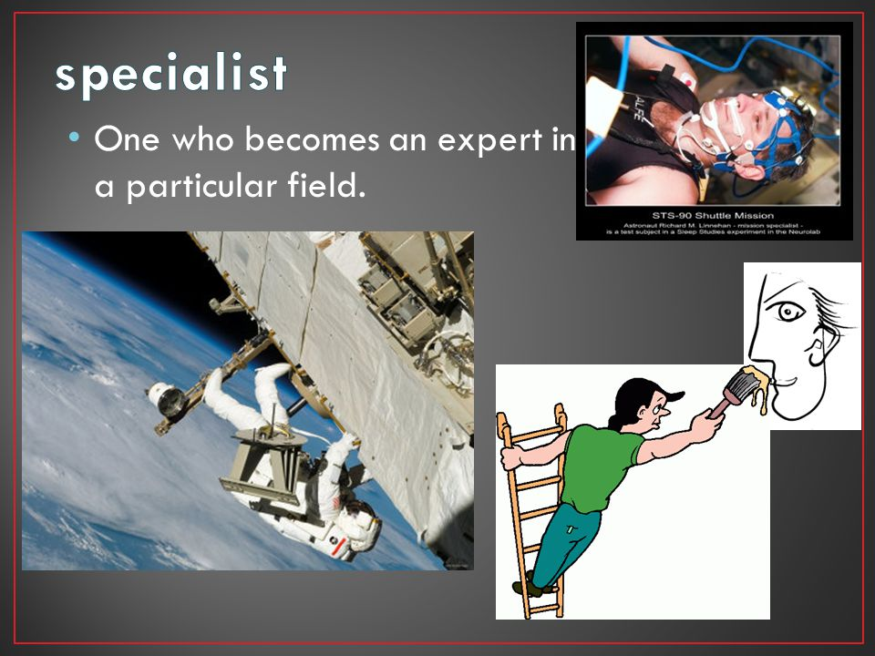 specialist One who becomes an expert in a particular field.