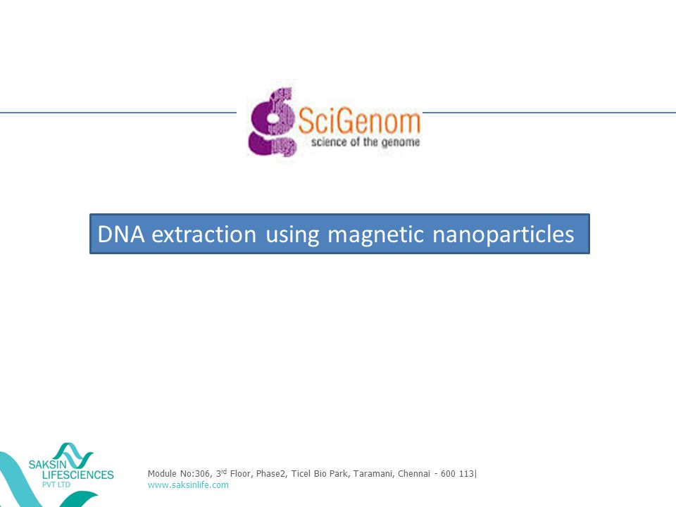 DNA extraction using magnetic nanoparticles