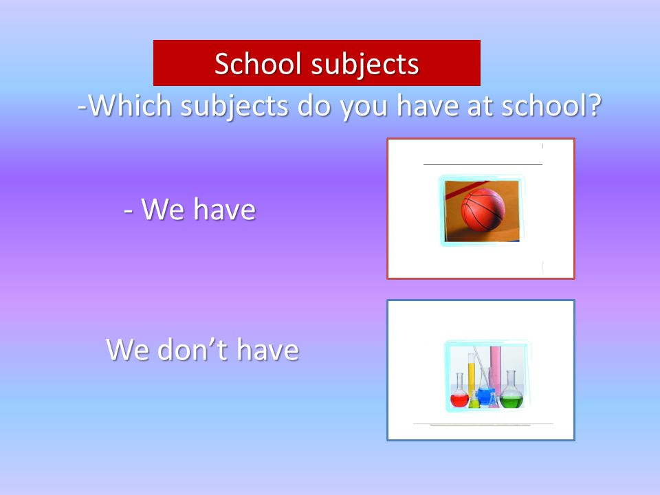 School subjects -Which subjects do you have at school - We have We don't have