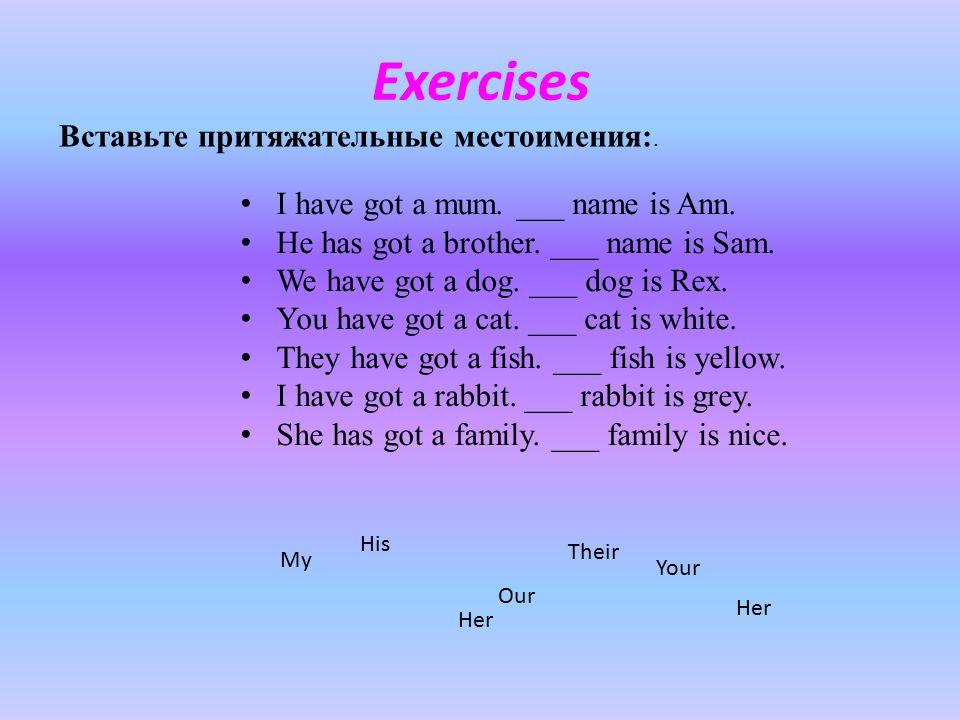 Exercises Вставьте притяжательные местоимения:.