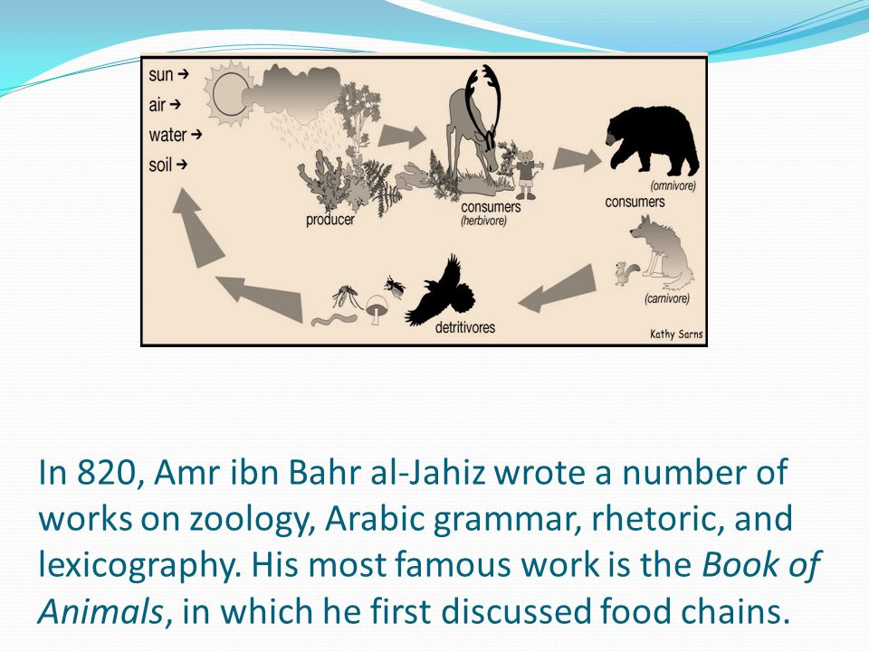 In 820, Amr ibn Bahr al-Jahiz wrote a number of works on zoology, Arabic grammar, rhetoric, and lexicography.
