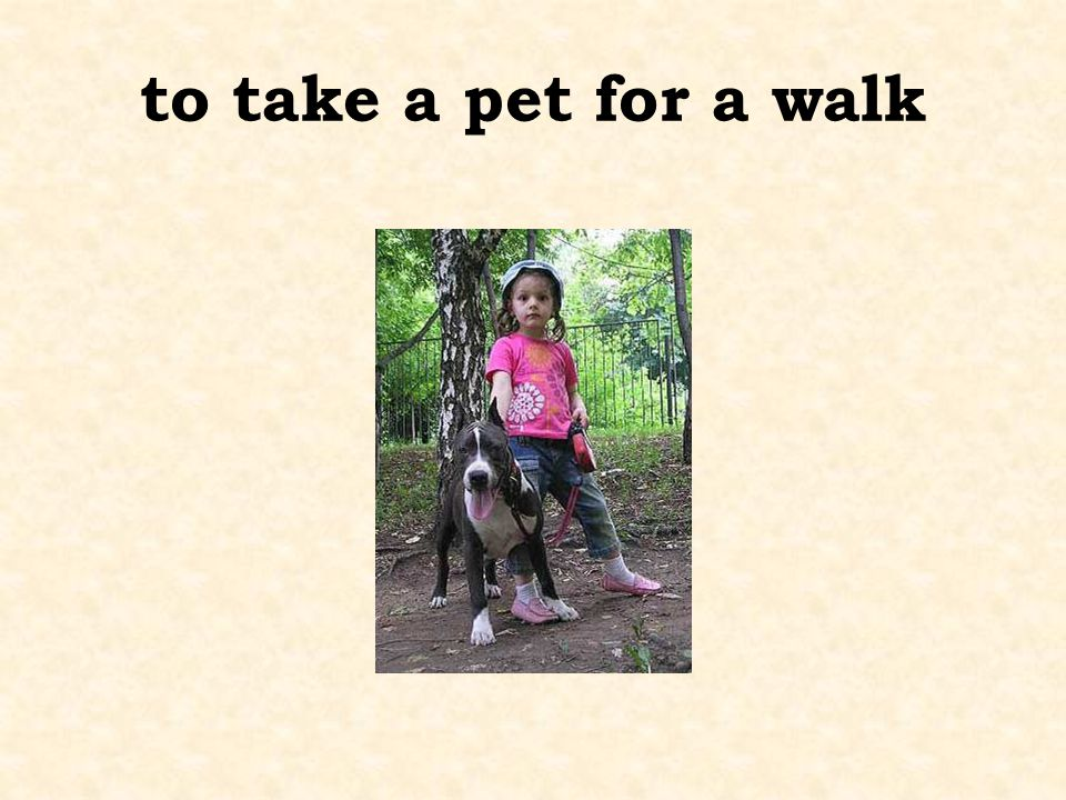 to take a pet for a walk