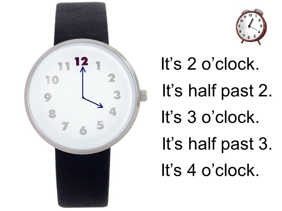 It's 2 o'clock. It's half past 2. It's 3 o'clock. It's half past 3. It's 4 o'clock.
