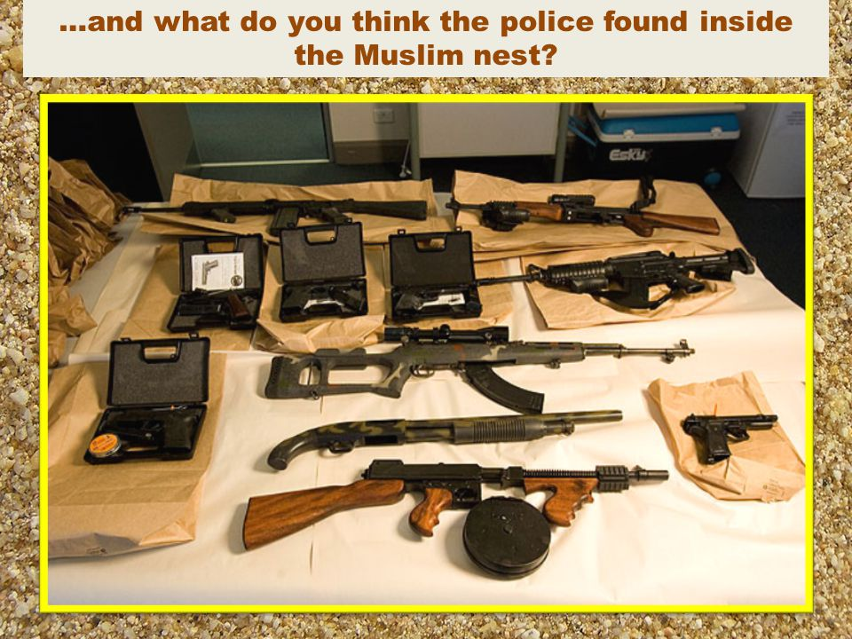 …and what do you think the police found inside the Muslim nest