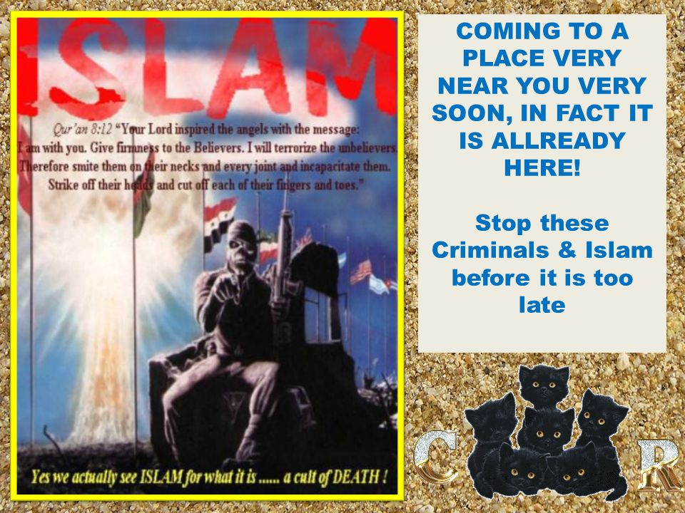Stop these Criminals & Islam before it is too late