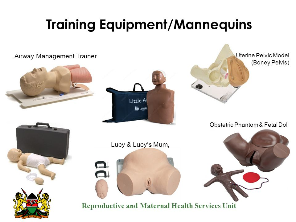Training Equipment/Mannequins