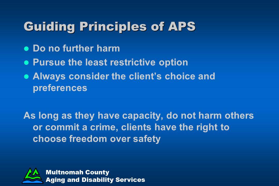 Guiding Principles of APS