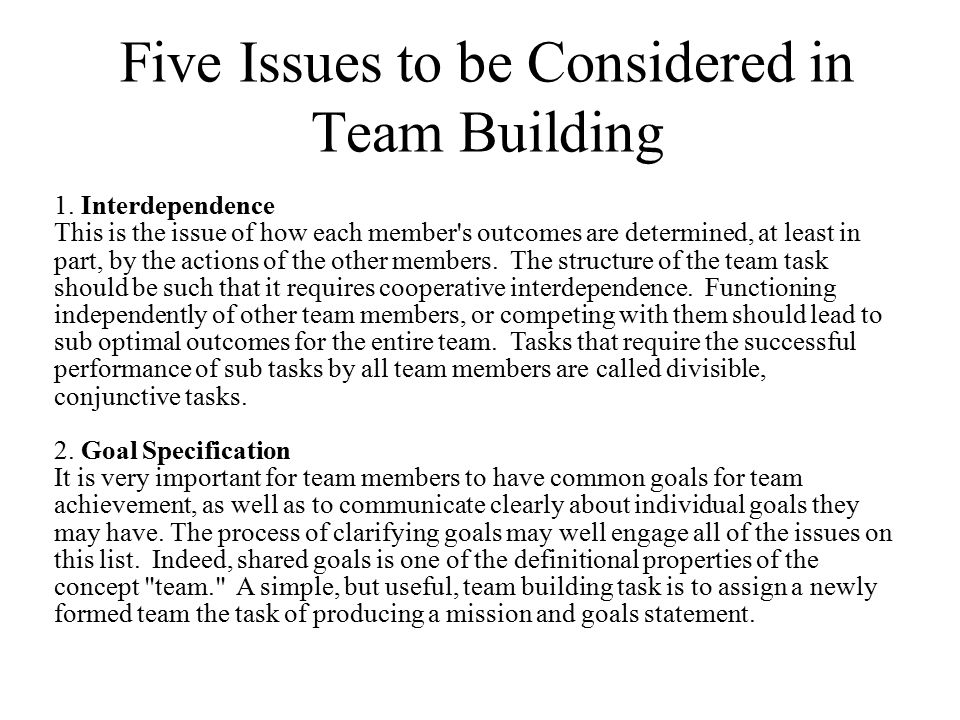 Five Issues to be Considered in Team Building