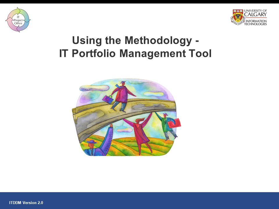 Using the Methodology - IT Portfolio Management Tool