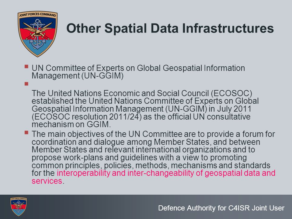 Other Spatial Data Infrastructures