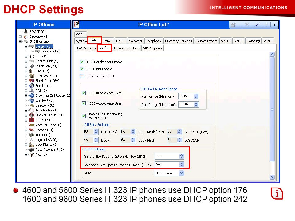 DHCP Settings 4600 and 5600 Series H.323 IP phones use DHCP option 176 1600 and 9600 Series H.323 IP phones use DHCP option 242.
