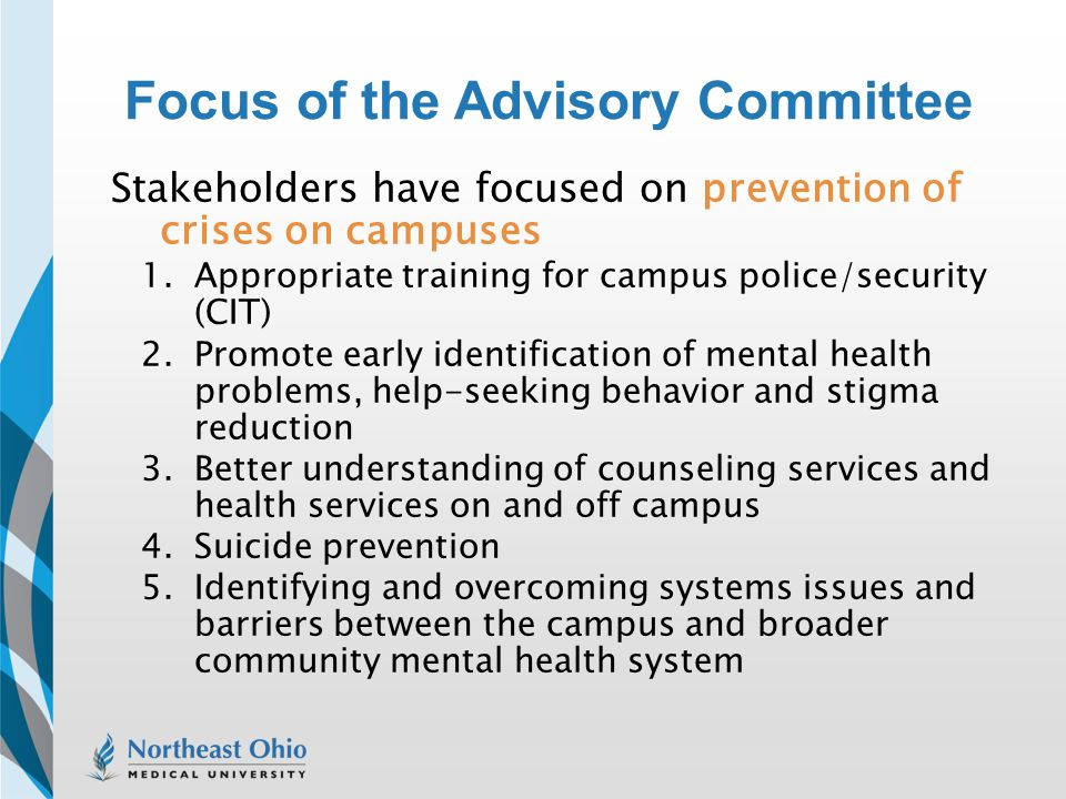 Focus of the Advisory Committee