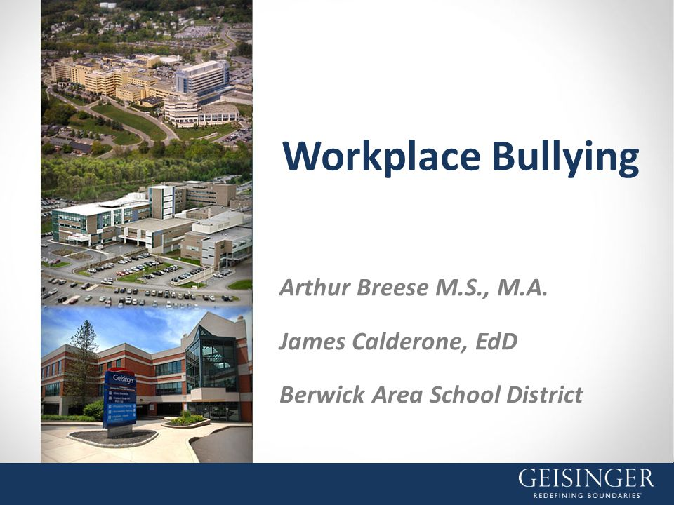 Workplace Bullying Arthur Breese M.S., M.A. James Calderone, EdD